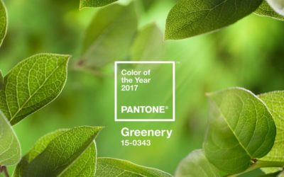 On Trend Website Using Pantone's Color of Year 2017