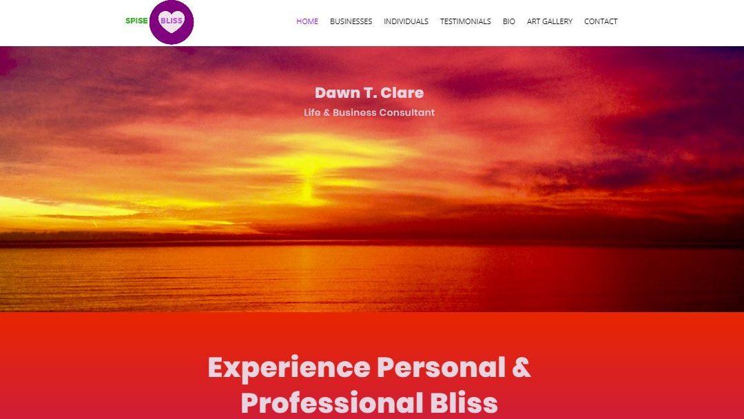 Santa Monica Consultant Web Design