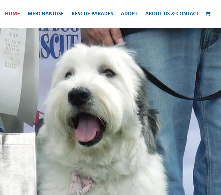 Web Design for Non-Profit Pet Rescue & Adoption, Santa Monica