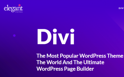 Need Help with a DIVI Website? Hire Local Divi Theme Designer in Santa Monica